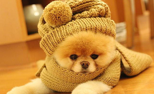 Tá frio aí?